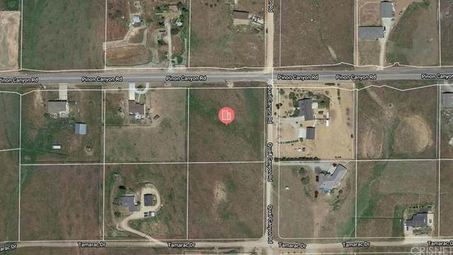 0 S/W Cor. Pinon Cnyn Rd & Quail Canyon Rd, Tehachapi, CA 93561 (MLS #SR21224224) :: ERA CARLILE Realty Group