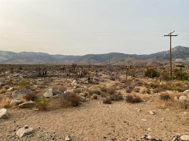 7757 Custer Avenue, Lucerne Valley, CA 92356 (#539961) :: RE/MAX Freedom