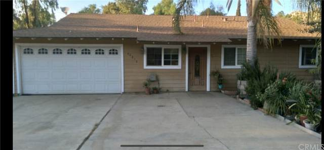 40816 Gibbel Road, Hemet, CA 92544 (#IV21225016) :: Real Estate One