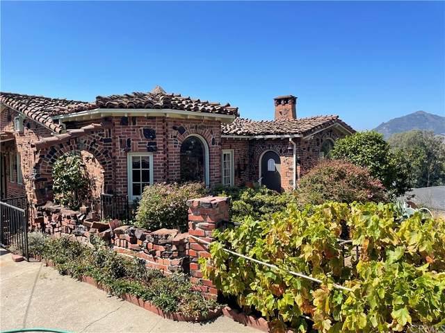 2243 Santa Ynez Avenue, San Luis Obispo, CA 93405 (#SC21196105) :: The Laffins Real Estate Team