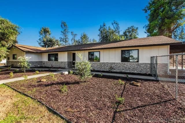 17066 Whirlwind Lane, Ramona, CA 92065 (#210028570) :: Necol Realty Group