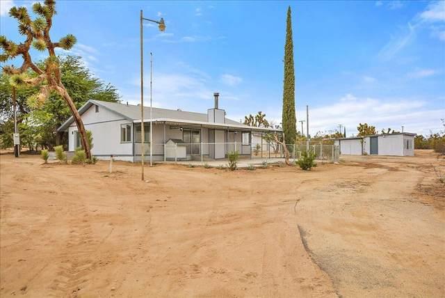 59085 Memory Lane, Yucca Valley, CA 92284 (#219068781DA) :: Swack Real Estate Group | Keller Williams Realty Central Coast