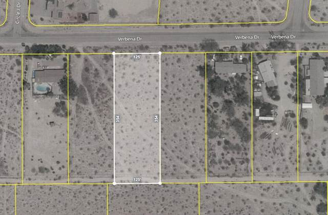 Verbena Dr Lot 18, Borrego Springs, CA 92004 (#NDP2111622) :: A|G Amaya Group Real Estate