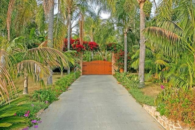1703 Sienna Canyon Drive, Encinitas, CA 92024 (#NDP2111624) :: Murphy Real Estate Team
