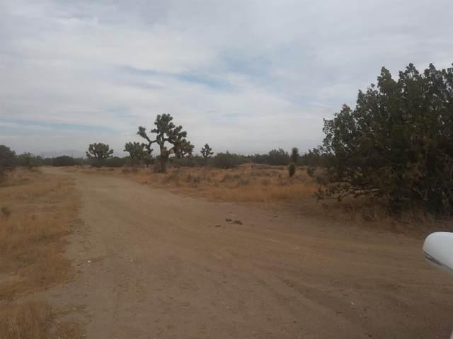 0 Elsinore Road, Oak Hills, CA 92344 (#539934) :: RE/MAX Freedom