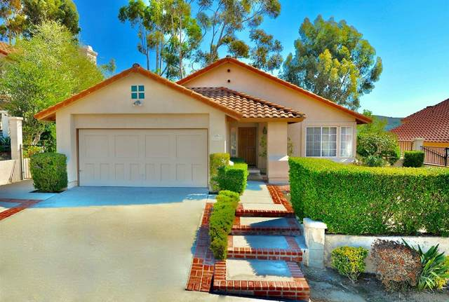 12611 Salmon River Road, San Diego, CA 92129 (#210028765) :: The Laffins Real Estate Team
