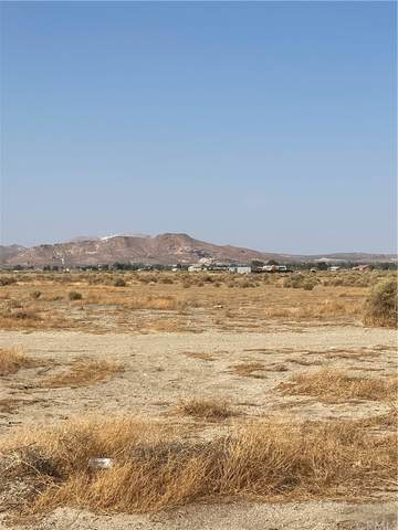 0 North Of Gaskell Road X 70th Street West, Rosamond, CA 93560 (#SN21227248) :: The M&M Team Realty