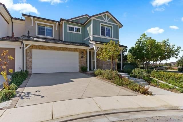 633 Manzanita Lane, Encinitas, CA 92024 (#210028811) :: Blake Cory Home Selling Team