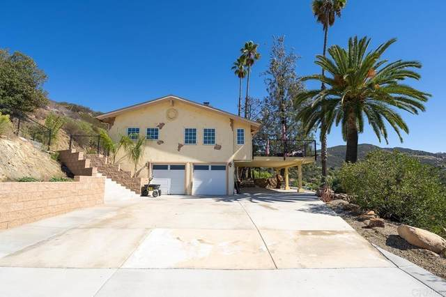 3291 Chaparral Heights Road, Jamul, CA 91935 (#PTP2107220) :: Bob Kelly Team