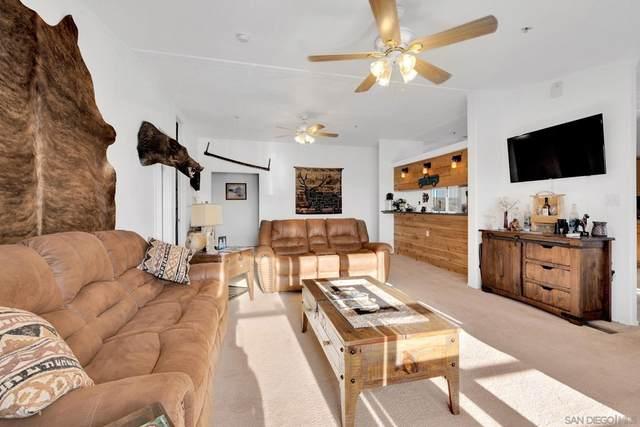 3240 Chimney Rock Road, Ranchita, CA 92066 (#210028918) :: Robyn Icenhower & Associates