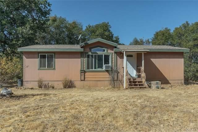 4562 Alamo Creek Road, Mariposa, CA 95338 (#MP21228738) :: Compass