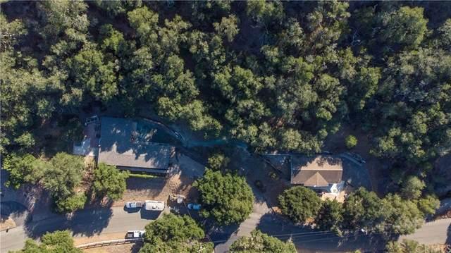 1672 Bee Canyon Road, Arroyo Grande, CA 93420 (#SC21226281) :: Blake Cory Home Selling Team