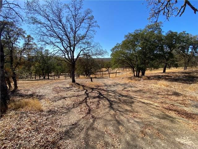 400 Rolling Oaks Lane, Oroville, CA 95914 (#SN21228355) :: The Laffins Real Estate Team
