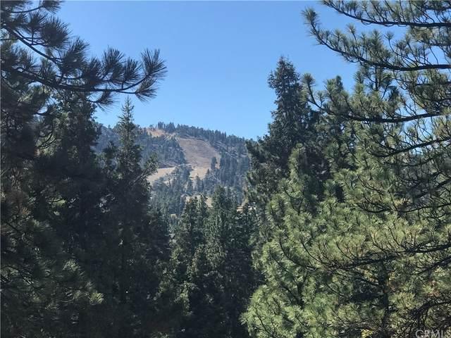 0 Sheephorn Rd, Big Bear, CA 92315 (#IG21227250) :: RE/MAX Empire Properties