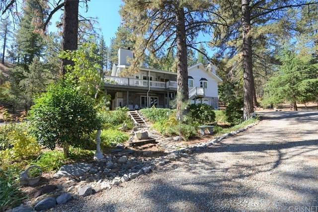 11620 Steinhoff Road, Frazier Park, CA 93225 (#SR21229068) :: The Laffins Real Estate Team
