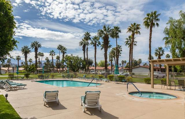 77914 Calypso Road, Palm Desert, CA 92211 (#219069045DA) :: Mark Nazzal Real Estate Group