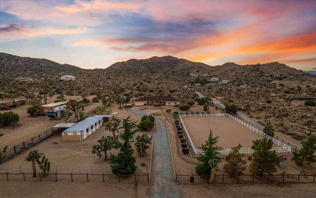 9588 Black Rock Canyon Road, Yucca Valley, CA 92284 (#219068772PS) :: Compass