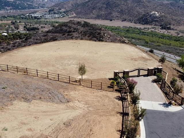 1243517500 Monserate Place, Fallbrook, CA 92028 (#NDP2111822) :: RE/MAX Empire Properties