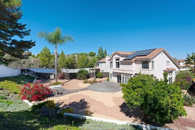 4877 Pointillist Ct, Oceanside, CA 92057 (#NDP2111825) :: Blake Cory Home Selling Team