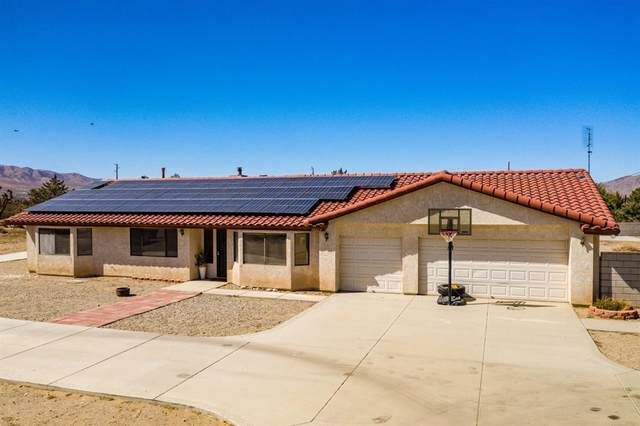 10262 Newton Road, Lucerne Valley, CA 92356 (#540171) :: RE/MAX Freedom