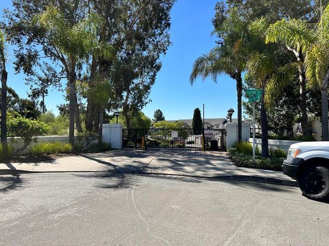 8714 Spring Canyon Drive, Spring Valley, CA 91977 (#PTP2107288) :: Blake Cory Home Selling Team