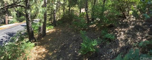 0 Mountain Home Creek Road, Angelus Oaks, CA 92305 (#EV21230517) :: Blake Cory Home Selling Team