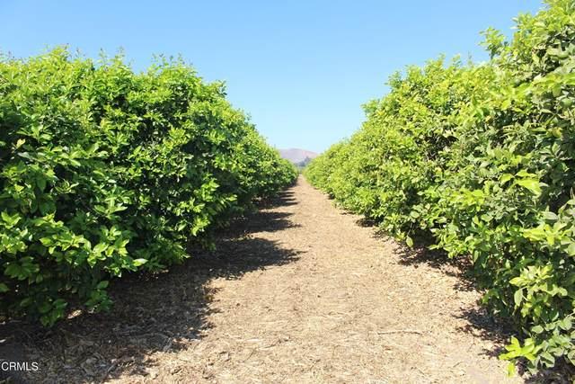 0 Telegraph Road, Ventura, CA 93004 (#V1-8986) :: Blake Cory Home Selling Team