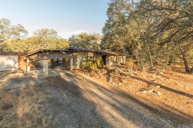 4893 Indian Peak Road, Mariposa, CA 95338 (#MP21225404) :: Compass