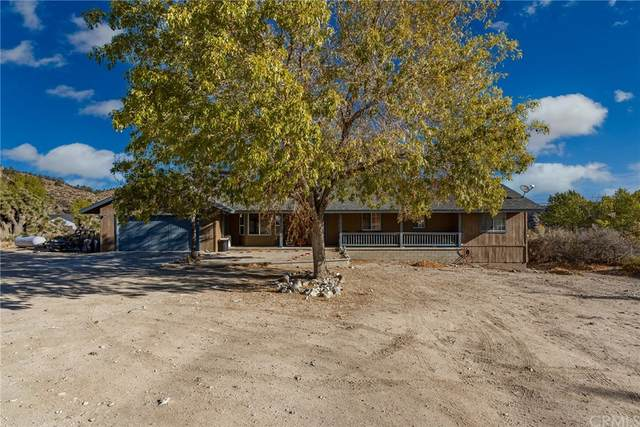 2224 Oak Springs Valley Road, Wrightwood, CA 92397 (#IG21232127) :: Robyn Icenhower & Associates