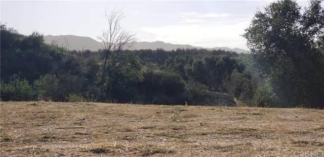 10 Live Oak, Canyon Country, CA 91387 (#SR21232920) :: Powerhouse Real Estate