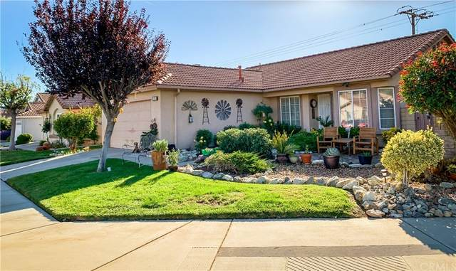 10350 Bel Air Drive, Cherry Valley, CA 92223 (MLS #IV21233007) :: ERA CARLILE Realty Group