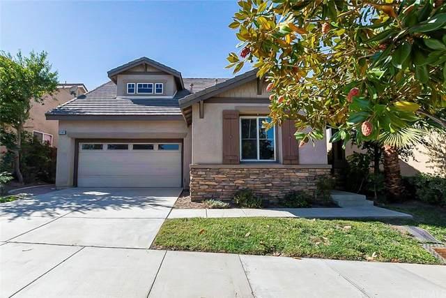 25003 Coral Canyon Road, Corona, CA 92883 (#IV21233013) :: Latrice Deluna Homes