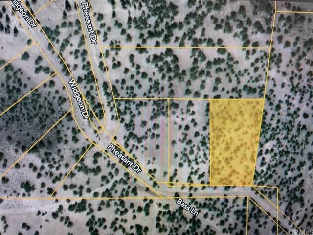0 Pheasant Dr, Alturas, CA 96101 (#OC21232506) :: Team Tami