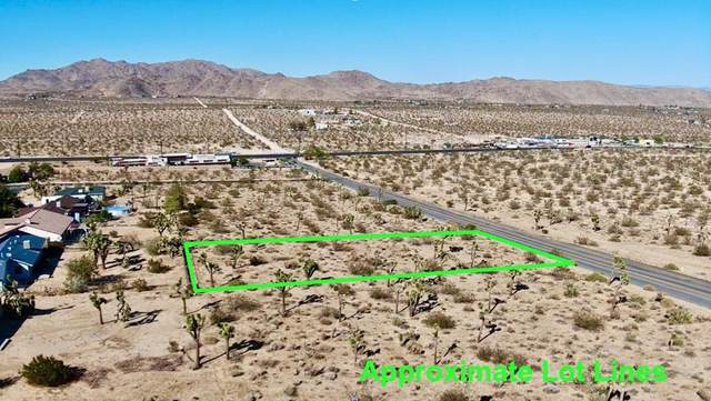 307 Sunny Vista Road, Joshua Tree, CA 92252 (#219069277PS) :: Powerhouse Real Estate