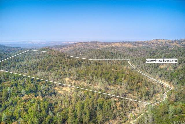 0 Swedes Flat Road, Oroville, CA 95914 (#OR21233363) :: A|G Amaya Group Real Estate