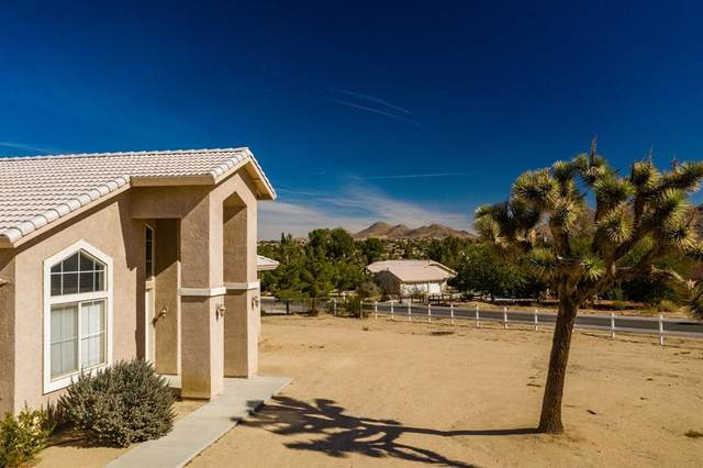 18850 Chapae Lane, Apple Valley, CA 92307 (#540315) :: Z REALTY