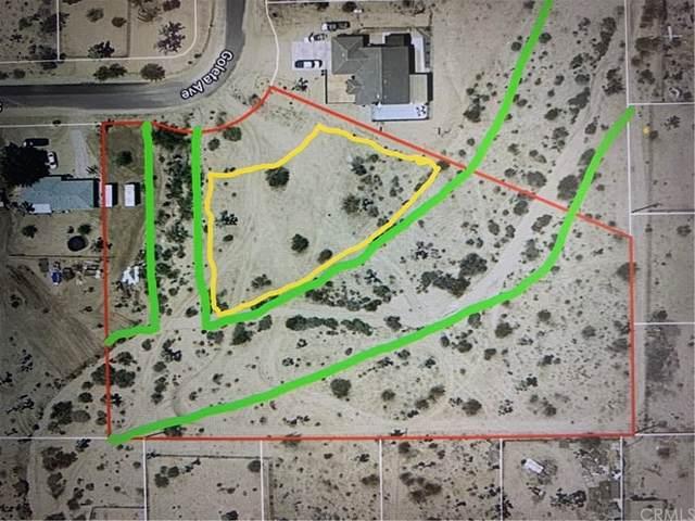 58798 Sun Oro Drive, Yucca Valley, CA 92284 (MLS #JT21233467) :: ERA CARLILE Realty Group