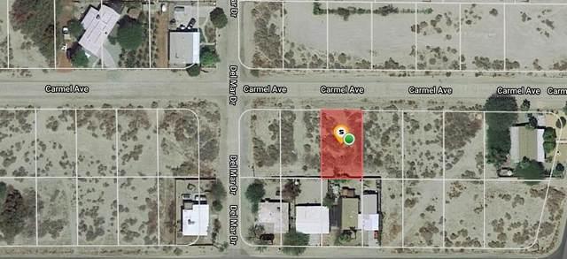 85 Carmel Avenue, Desert Shores, CA 92274 (#219069344DA) :: Zen Ziejewski and Team
