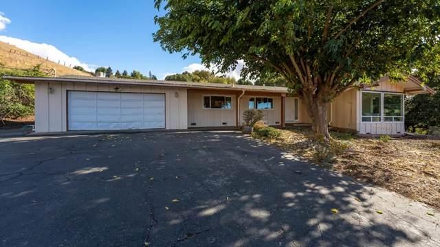 3810 Quimby Road, San Jose, CA 95148 (#ML81867811) :: Frank Kenny Real Estate Team