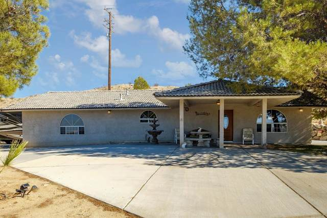 26725 National Trails Highway, Helendale, CA 92342 (#540322) :: Z REALTY