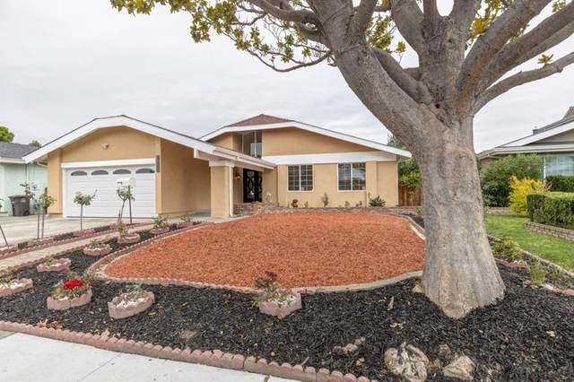 4568 Delores Drive, Union City, CA 94587 (#ML81867847) :: Blake Cory Home Selling Team