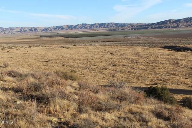 0 Santa Barabra Canyon Road, Cuyama, CA 93254 (MLS #V1-9078) :: ERA CARLILE Realty Group