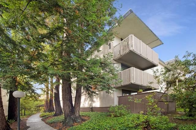 1203 Shelter Creek Lane, San Bruno, CA 94066 (MLS #ML81867853) :: ERA CARLILE Realty Group
