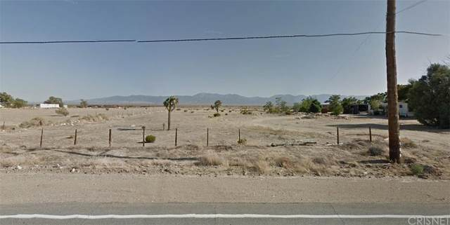 18760 Palmdale Boulevard S, Palmdale, CA 93591 (#SR21234182) :: Re/Max Top Producers