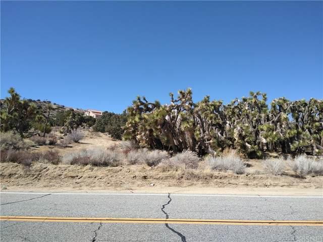 0 Longview Rd & Old Homestead, Juniper Hills, CA 93543 (#SR21234195) :: Steele Canyon Realty