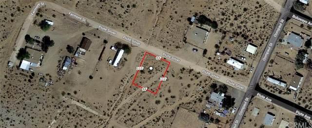 0 Piute Silver, Johannesburg, CA 93528 (#CV21234300) :: The Marelly Group | Sentry Residential