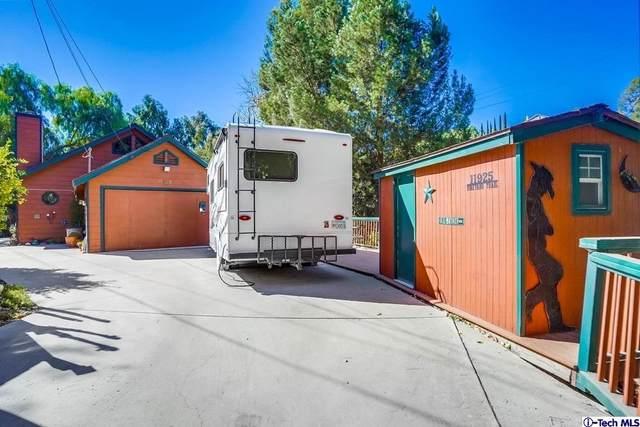 11925 Vineyard Trail, Kagel Canyon, CA 91342 (#320008117) :: RE/MAX Empire Properties
