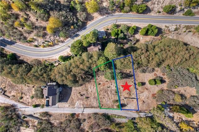 0 Alder Lane, Cedar Glen, CA 92321 (#EV21234815) :: RE/MAX Empire Properties