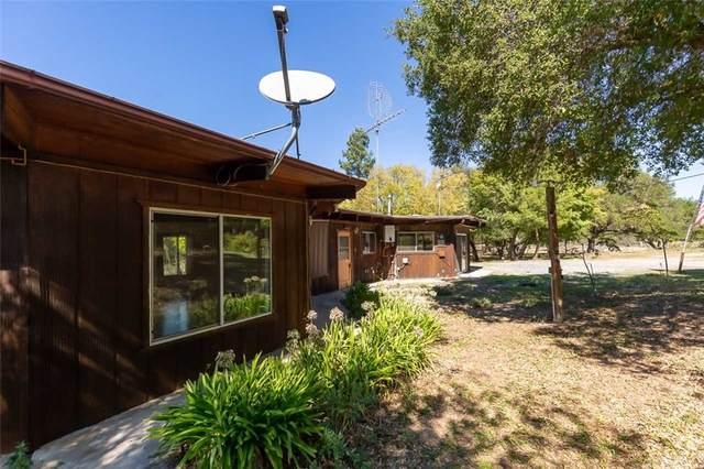 10721 Rainbow Heights Road, Fallbrook, CA 92028 (#PW21234676) :: Robyn Icenhower & Associates