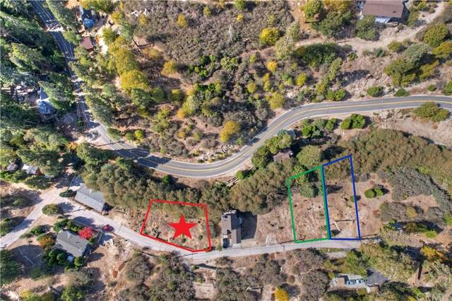 248 Alder Lane, Cedar Glen, CA 92321 (#EV21234825) :: RE/MAX Empire Properties